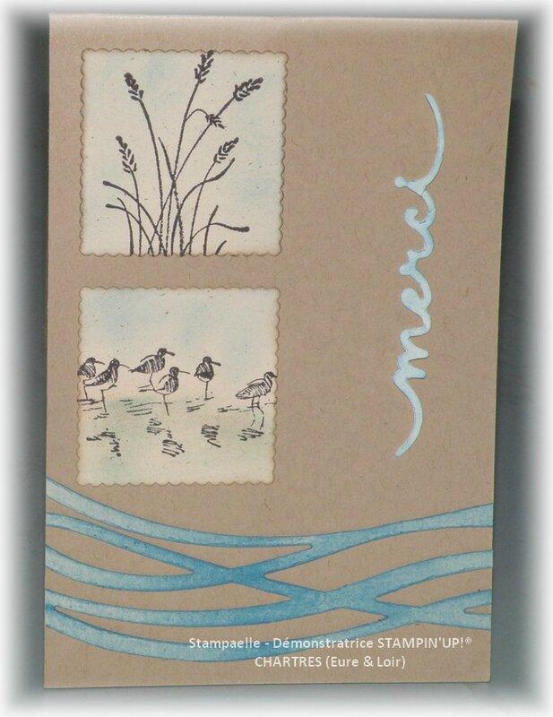 twist wetlands (2)