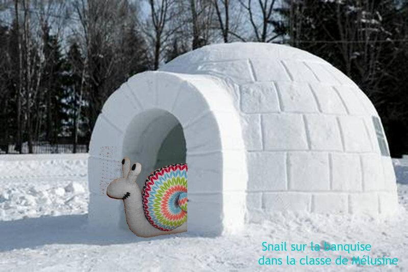 snail igloo