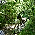 balade equestre gastronomique à La Lucerne d'Outremer (154)