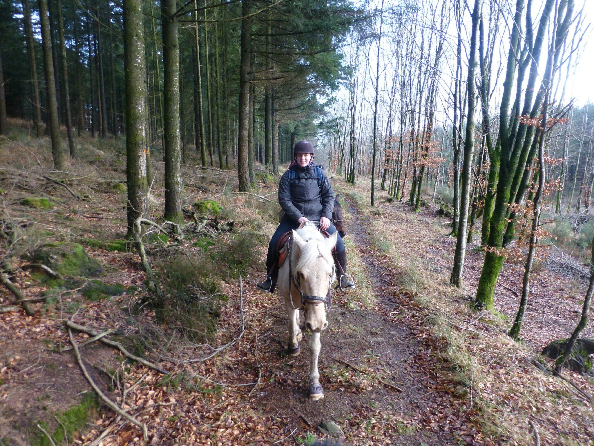 Balade à cheval dans la forêt P1080206