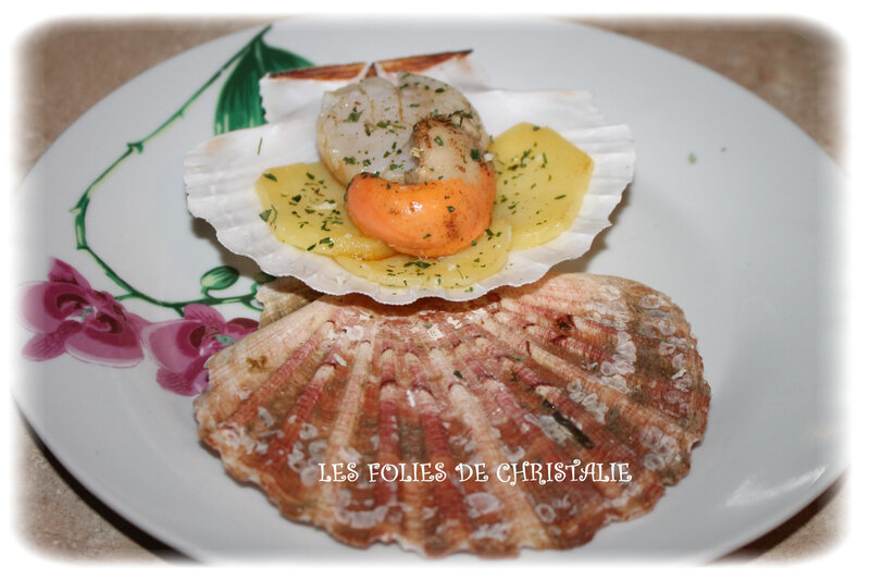 Coquilles st jacques 2