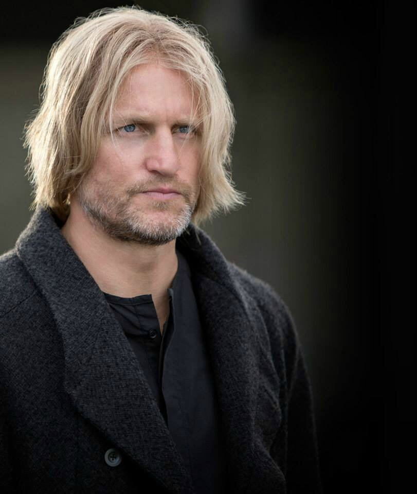 Haymitch Cathing Fire
