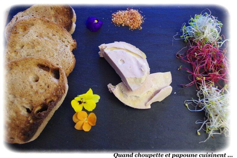 assiette de foie gras, sel au piment d'espelette et pousses germées-8191