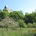 25_ste suzanne, vue du chateau