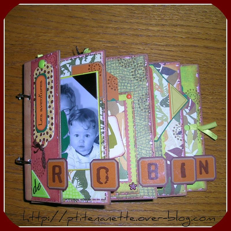 MINI ROBIN (1) 2010