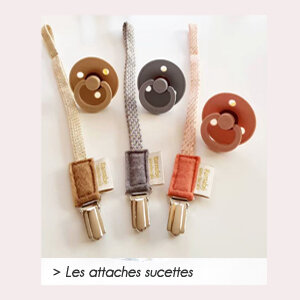 vignette-attaches