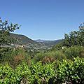 Les vignobles des estangs, venterol