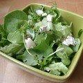 Salade de pourpier aux graines de chanvre