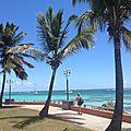 Croisière de rêve en mer des caraïbes : le bonheur à l'état pur !!!