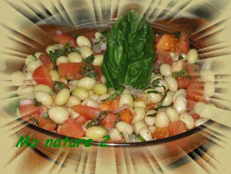 Salade de haricots coco au basilic 002