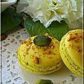 Macaron pistache4