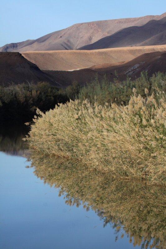 Le Draa au sud du Jbel Bani2_Maroc 2011_XRu