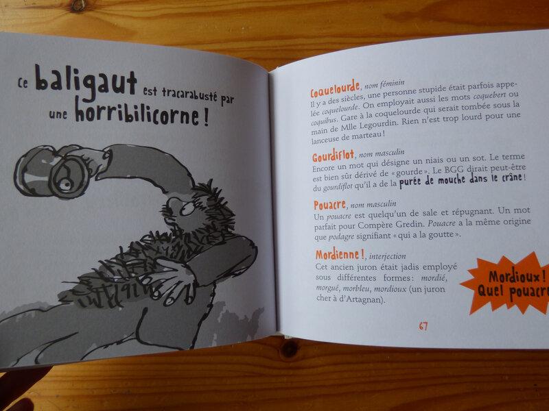 Petit manuel des gros mots de Roald Dahl (3)
