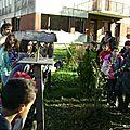 au collège pour planter nov 2013 082