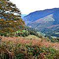 Sur les flancs du Mont Oelharisse...