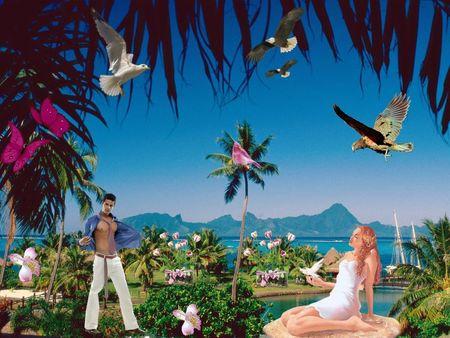 fonds-decran-Ile paradisiaque HD