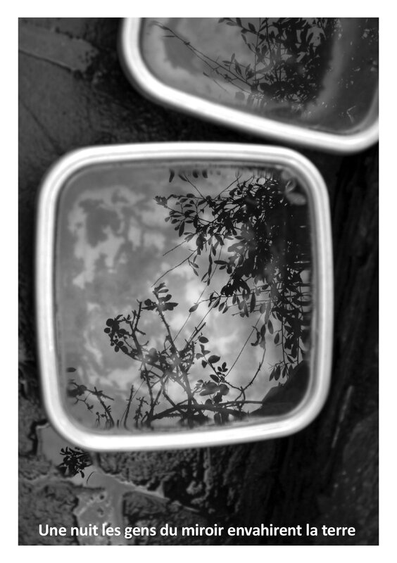 ARTY_6_REFLET_HD-42_sylvie_duchemin
