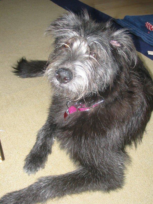 Bella 16 mars 2007