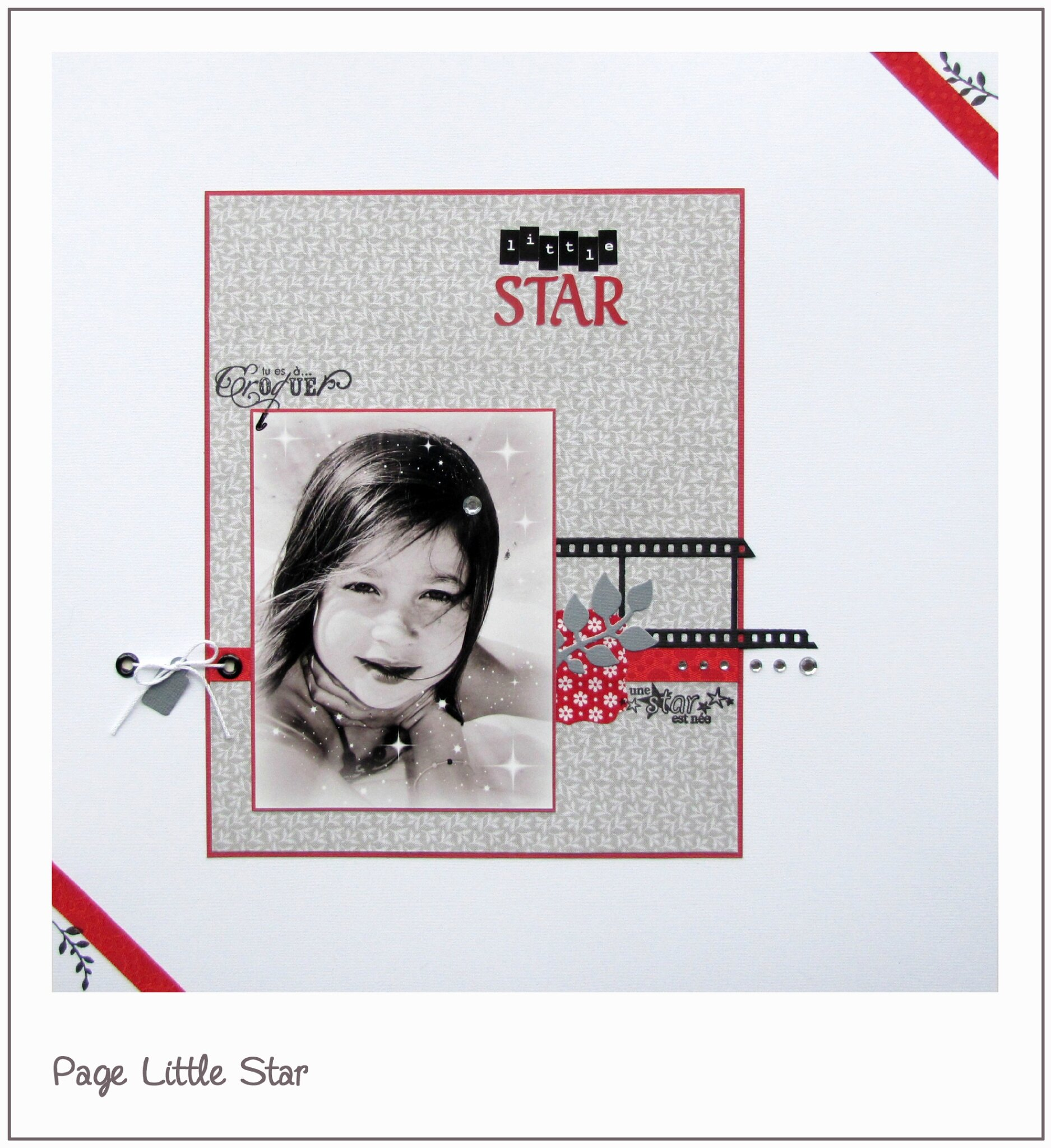 24 - 300413 - Little Star