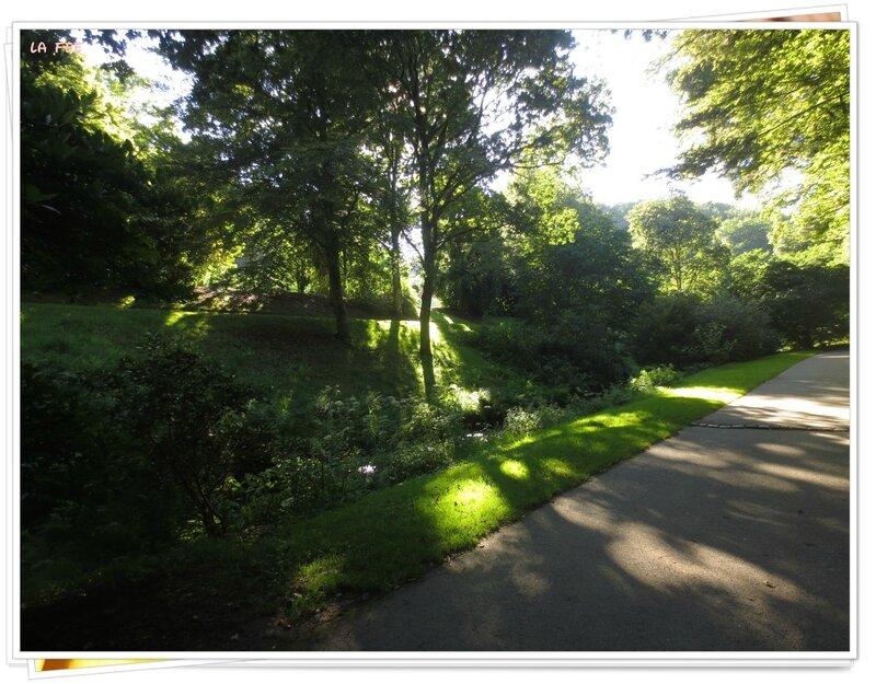 jardin botanique (14)