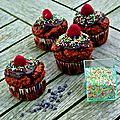 Cupcakes choco-coco-framboise