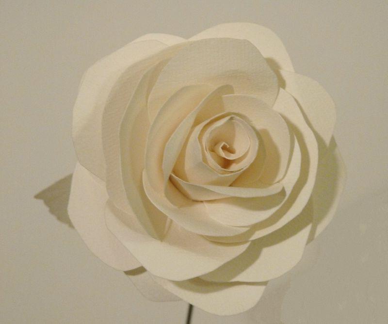 Rose de papier, détail