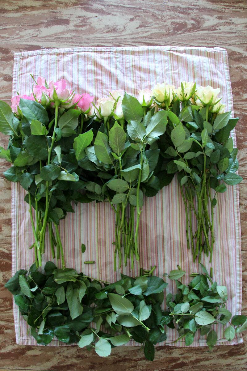 Comment Faire Un Bouquet De Roses astuce : comment améliorer le look d'un bouquet de roses
