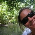 Toujours l'Indian River : la mangrove dominicaise