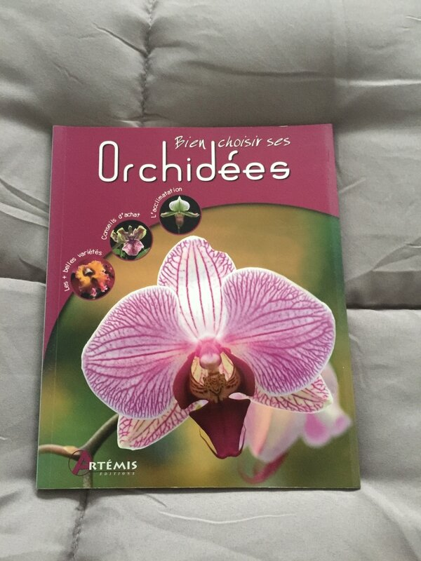 Bien choisir ses Orchidées