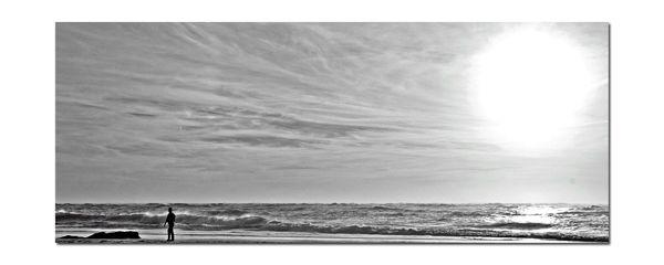 ferret océan janvier 08 086