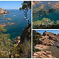 calanques costa brava 2015