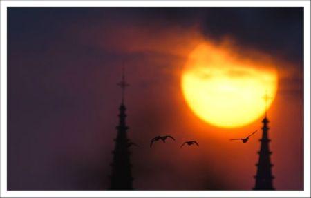 ville lulu lever soleil St Andre 3 canards 150412