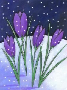 crocus-flowers-blooming-in-snowfall_u-l-q10wjqp0