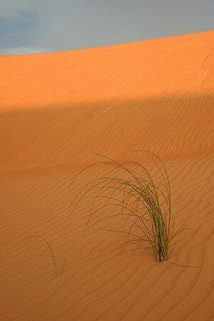 mauritanie_4712