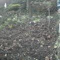 Jardin de novembre ,jardin au repos