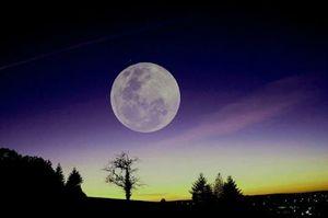 quand-la-nuit,2655393-L