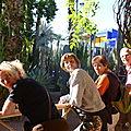 Au milieu des cactus du Jardin Majorelle