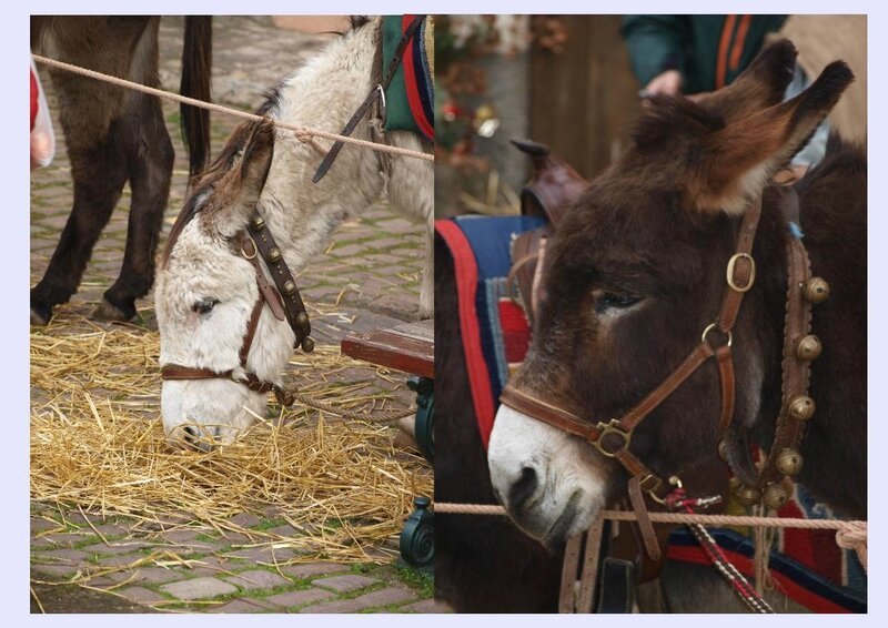 MARCHE NOEL MEDIEVAL RIBEAUVILLE 06