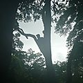 Opération canopée 2012_Laos47
