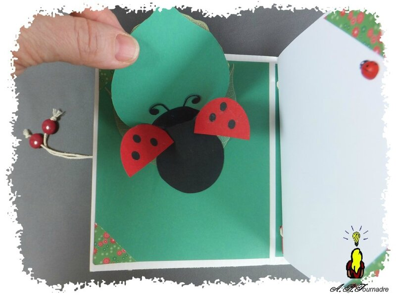 ART 2015 04 mini album coccinelle 7
