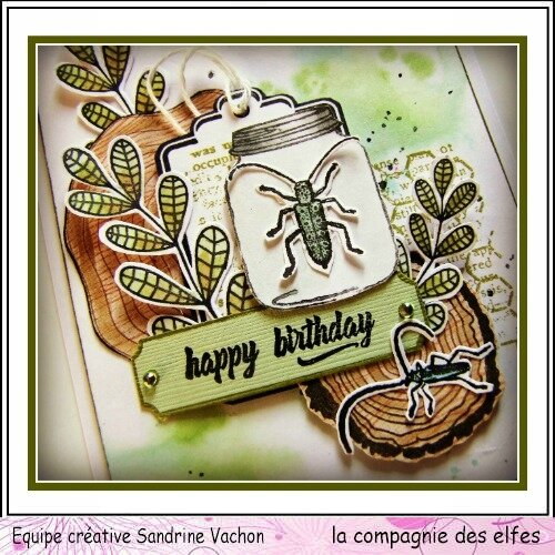 Janv dt LCDE carte HAPPY BIRTHDAY (3)