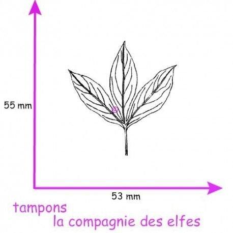 tampon-feuille-pivoine-pm-non-monte