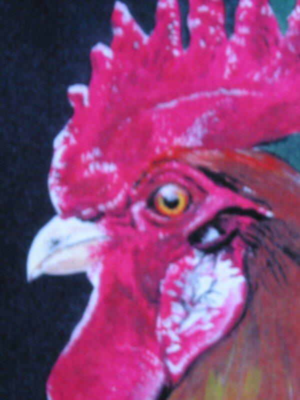 regard de coq