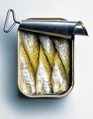 sardine_moyenne