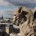 Une gargouille de Notre-Dame (2001)