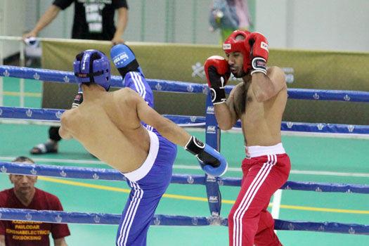 Sport Asiatique jeux asiatiques d'arts martiaux bangkok 2009 - jujitsupassion