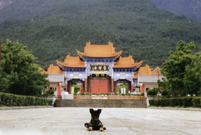 Chine PM265