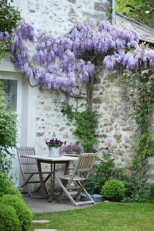 Shabby Chic Decor & Inspiration from Tania Bourea. #wisteria #shabbychic #stonecottage