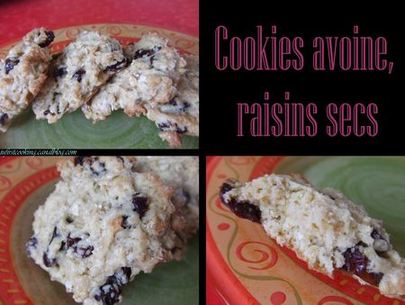 Cookies_avoine_raisins_035_canal