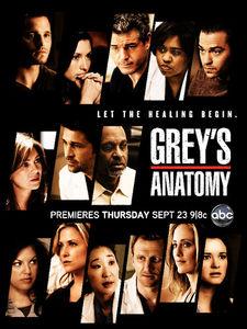 Grey_s_Anatomy___Season_7